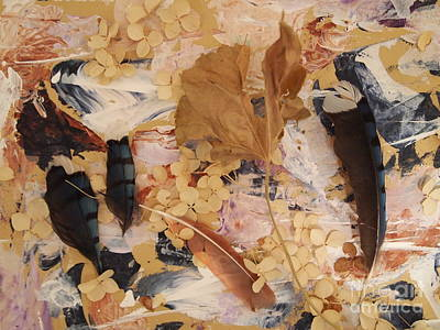 Dried Mixed Media - Bluejay Feathers by Nancy Kane Chapman