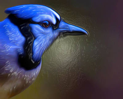 Photograph - Bluejay by Robert L Jackson
