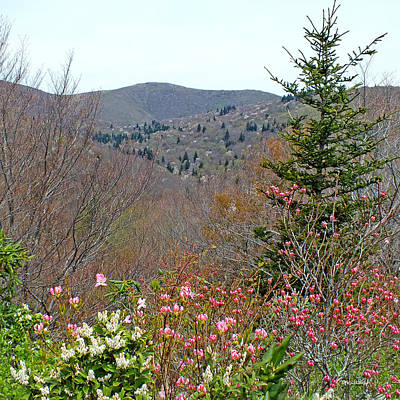 Photograph - Blueridge Parkway North View Near Mm 421 by Duane McCullough