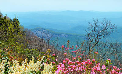 Photograph - Blueridge Parkway View Of Looking Glass Rock And Wild Flowers by Duane McCullough
