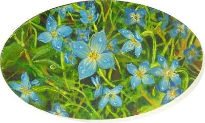 Painting - Bluets Of The Shenandoah  by Nicole Angell