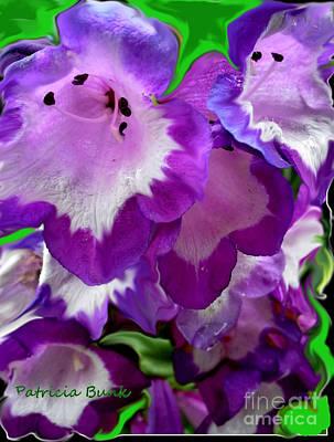Blueviolet Art Print