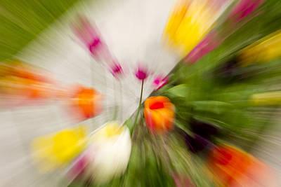 Ashlee Meyer Photograph - Blurred Tulips by Ashlee Meyer