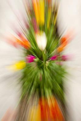 Ashlee Meyer Photograph - Blurred Tulips II by Ashlee Meyer