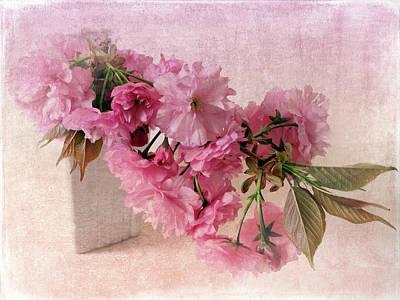 Cherry Blossoms Digital Art - Blush Blossom by Jessica Jenney