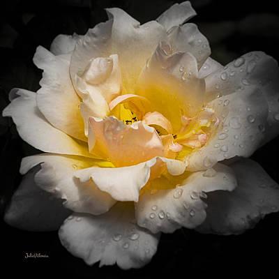 Katharine Hepburn - Blushing Beauty by Julie Palencia