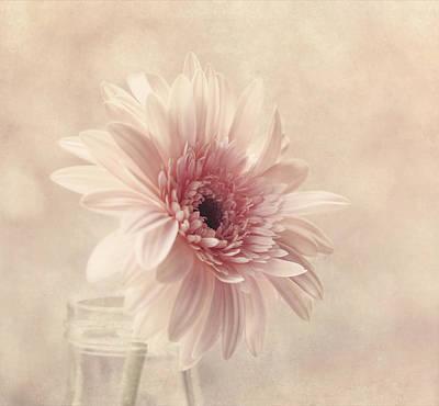 Blushing Art Print by Kim Hojnacki