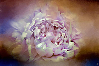 Photograph - Blushing Lavender And Sand Wash Peony - Floral by Jai Johnson