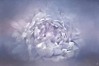 Photograph - Blushing Lavender Peony - Floral by Jai Johnson