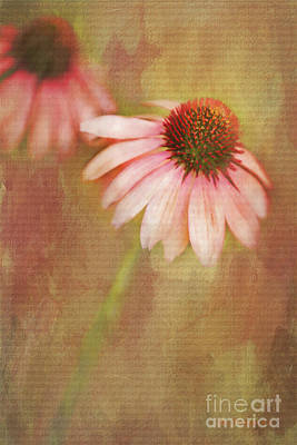 Art Print featuring the painting Blushing by Linda Blair