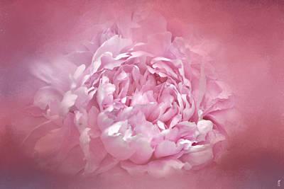 Photograph - Blushing Pink Peony - Floral by Jai Johnson