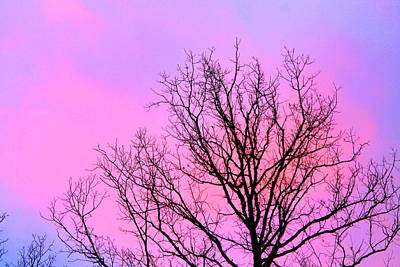 Print featuring the photograph Blushing Sky by Candice Trimble
