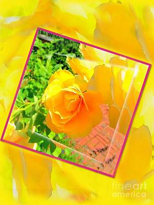 Photograph - Blushing Yellow Rose Abstract by Becky Lupe