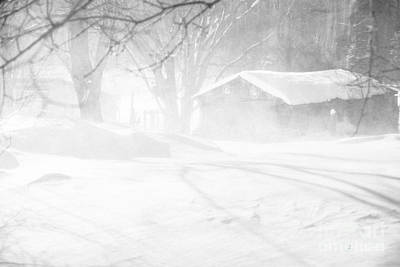 Photograph - Blustery Winter by Cheryl Baxter