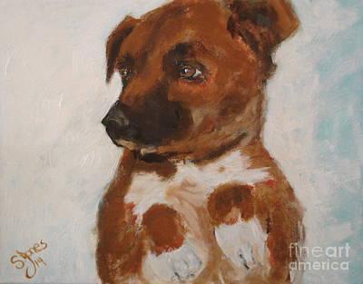 Painting - Bo Jack by Shelley Jones
