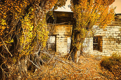 John Williams Photograph - Boarding House Ruins by John Williams