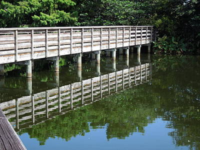 Photograph - Boardwalk And Reflection by Ron Davidson