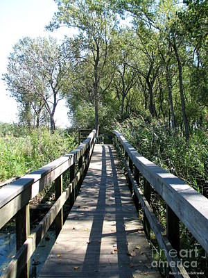 Photograph - Boardwalk At Tifft Nature Preserve Buffalo New York by Rose Santuci-Sofranko