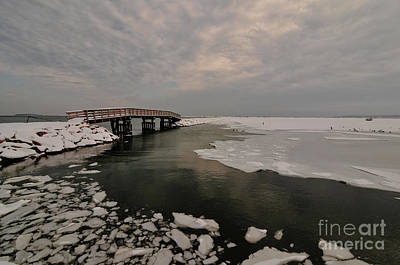 Plymouth Massachusetts Photograph - Boardwalk by Catherine Reusch Daley