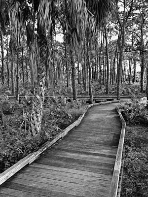 Boardwalk In Black And White 2 Art Print