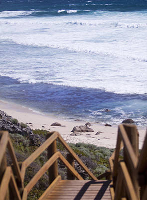 Photograph - Boardwalk Beach by Michelle Wrighton