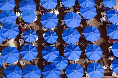 Photograph - Boardwalk Parasols by Alycia Christine