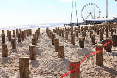 Photograph - Boardwalk Rebuild I by Mary Haber