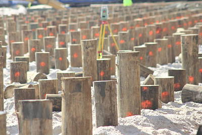 Photograph - Boardwalk Rebuild II by Mary Haber