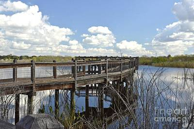 Photograph - Boardwalk Reflections by Carol  Bradley