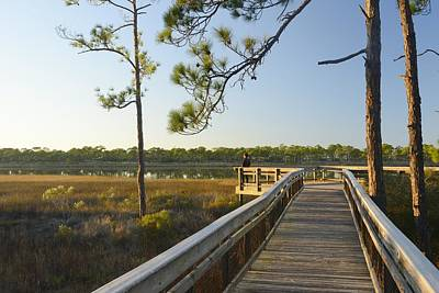 Boardwalk St.george Island Print by Christian Heeb
