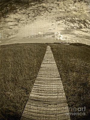 Walk Paths Photograph - Boardwalk Through The Dunes by Edward Fielding