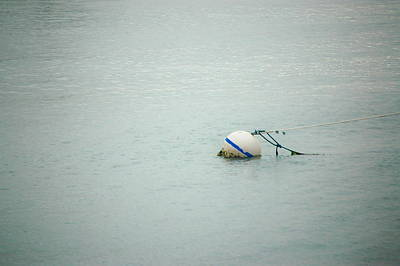 Photograph - Boat Buoy by Tamyra Crossley