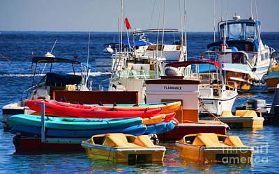 Photograph - Boat Cluster In Catalina By Diana Sainz by Diana Raquel Sainz