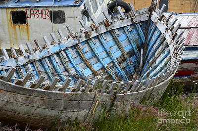 Photograph - Boat Graveyard Peurto Natales Chile 3 by Bob Christopher