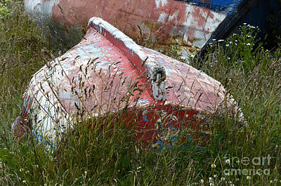 Photograph - Boat Graveyard Peurto Natales Chile 6 by Bob Christopher