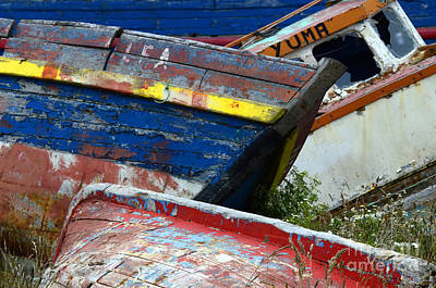 Photograph - Boat Graveyard Peurto Natales Chile 7 by Bob Christopher