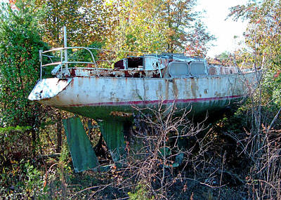 Art Print featuring the photograph Boat In Dry Dock Forest by Larry Bishop