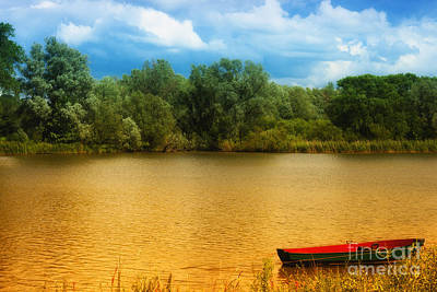 Photograph - Boat On A Golden Pond by Nick  Biemans