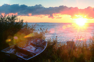 Fall Animals - Boat on Shore at Sunrise by Steve Somerville