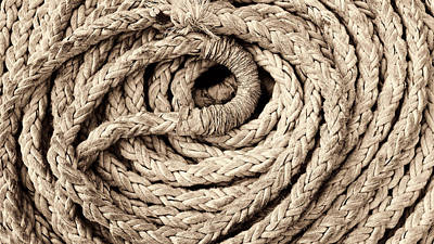 Photograph - Boat Rope No2 Sepia Version by Weston Westmoreland