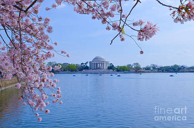 Photograph - Boats Across The Basin Of Blossoms by Jeff at JSJ Photography