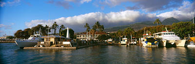 Boats At A Harbor, Lahaina Harbor Art Print