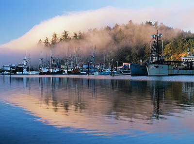 Boats Dock At Winchester Bay  Oregon Art Print by Robert L. Potts
