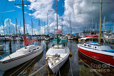 Boats In Marina Saint Petersburg Florida Art Print by Amy Cicconi