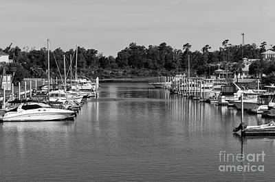 Photograph - Boats Lined Up In North Myrtle Beach Mono by John Rizzuto