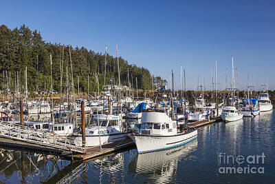 Boats Moored At Charleston Marina Art Print