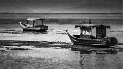 Photograph - Boats Of Trinidad by Ted Petrovits III