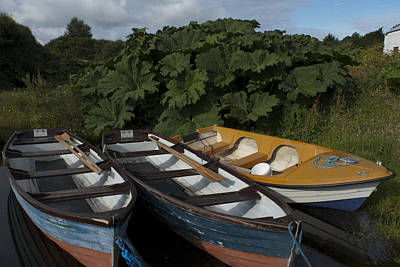 Photograph - boats on Cloone Lake by E j Carr