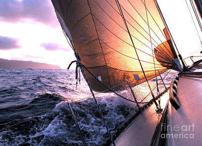 Boats Wing  Art Print by Boon Mee