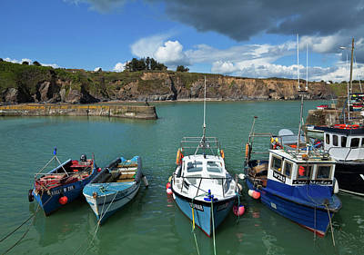 Fishing Harbour Photograph - Boatstrand Harbour,the Copper by Panoramic Images